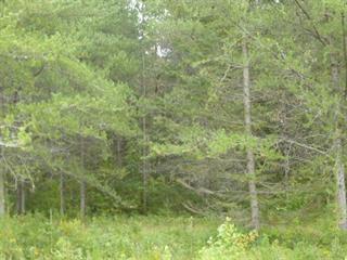 Lot for sale in Larouche, Saguenay/Lac-Saint-Jean, 325, Chemin du Lac-Moquin, 23636201 - Centris.ca