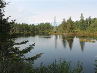 Lot for sale in Chertsey, Lanaudière, Chemin du Lac-Brûlé, 23542177 - Centris.ca