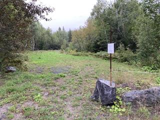 Lot for sale in Alma, Saguenay/Lac-Saint-Jean, Chemin du Domaine-Renaud, 28042665 - Centris.ca