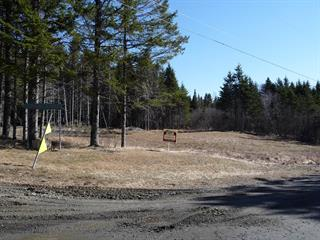 Lot for sale in Saint-Herménégilde, Estrie, Chemin  Lebel, 18366921 - Centris.ca