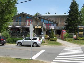 Bâtisse commerciale à vendre à Val-David, Laurentides, 1337, Rue de la Sapinière, 14347054 - Centris.ca