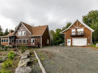 Maison à vendre à Saint-Donat (Lanaudière), Lanaudière, 64, Chemin du Faucon, 24086255 - Centris.ca