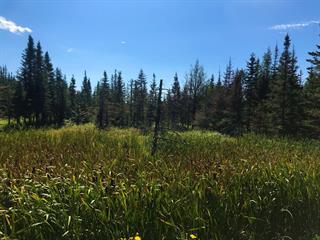 Land for sale in Saint-Hilarion, Capitale-Nationale, 2, Route  138, 24872244 - Centris.ca