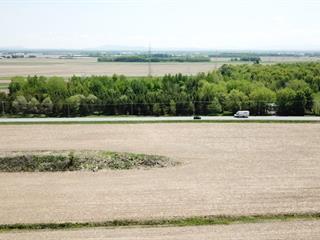 Terrain à vendre à Ange-Gardien, Montérégie, 911, Route  235, 16317707 - Centris.ca