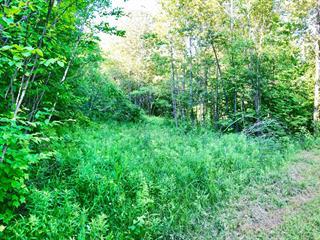 Terrain à vendre à Val-des-Monts, Outaouais, 11, Chemin  Brazeau, 12781275 - Centris.ca