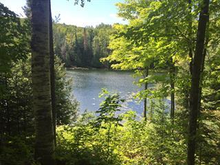 Terrain à vendre à La Pêche, Outaouais, 84, Chemin du Lac-Lauvignon, 16366881 - Centris.ca