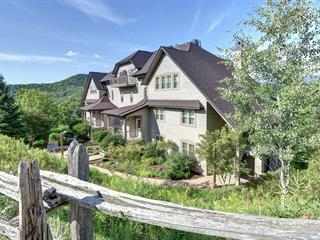 Condo / Apartment for rent in Mont-Tremblant, Laurentides, 216, Rue du Mont-Plaisant, apt. 7, 25719372 - Centris.ca