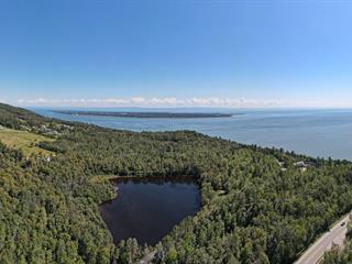 Terre à vendre à Baie-Saint-Paul, Capitale-Nationale, Rue du Nordet, 26709651 - Centris.ca