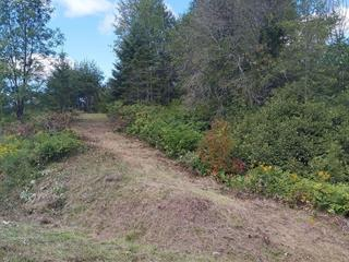 Lot for sale in Notre-Dame-de-la-Salette, Outaouais, Chemin  Lacroix, 14995507 - Centris.ca
