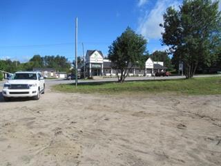 Lot for sale in Mont-Laurier, Laurentides, boulevard  Albiny-Paquette, 25261030 - Centris.ca