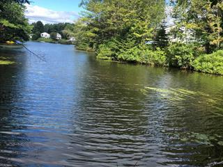 Terrain à vendre à Saint-Tite, Mauricie, Chemin de la Pisciculture, 27362287 - Centris.ca