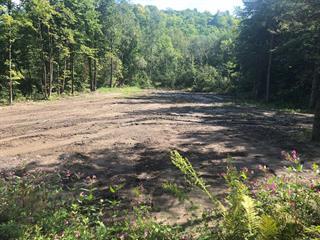 Terrain à vendre à Saint-Félix-de-Valois, Lanaudière, Chemin de la Rivière-L'Assomption, 20449147 - Centris.ca
