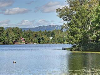 Maison à vendre à Mont-Tremblant, Laurentides, 300, Chemin du Lac-Forget, 28089343 - Centris.ca