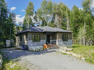 Maison à vendre à Saint-Donat (Lanaudière), Lanaudière, 45, Rue  Selesse, 18994865 - Centris.ca