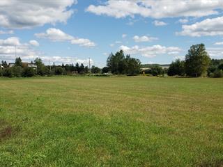 Terrain à vendre à Denholm, Outaouais, Chemin des Plaines, 24828040 - Centris.ca