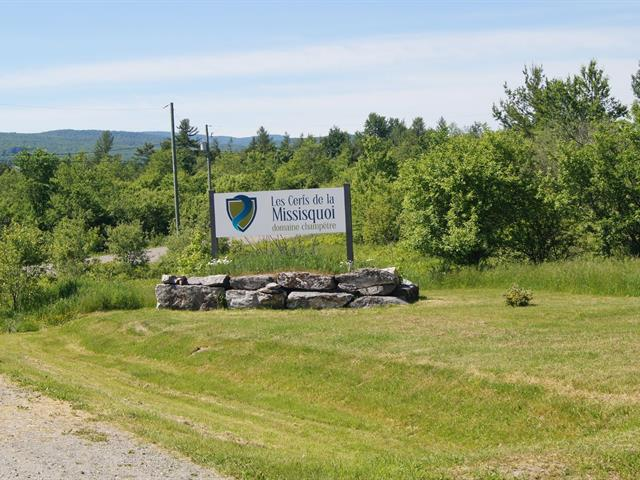 Terrain à vendre à Potton, Estrie, Chemin de Vale Perkins, 25044400 - Centris.ca