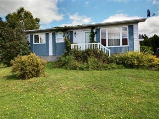 Maison à vendre à Saint-Fulgence, Saguenay/Lac-Saint-Jean, 6, Rue de la Fabrique, 9962148 - Centris.ca