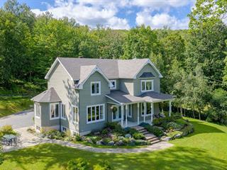 Maison à vendre à Sutton, Montérégie, 251, Chemin  Waterhouse, 22807026 - Centris.ca