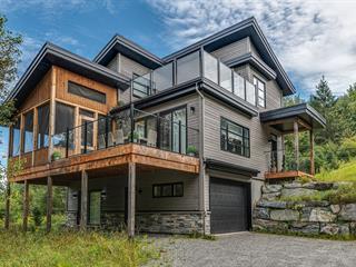 Maison à vendre à Mont-Tremblant, Laurentides, 305, Allée  Paisible, 25361371 - Centris.ca