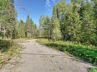 Terrain à vendre à Val-des-Monts, Outaouais, 31, Chemin du Lac-Clair, 27220829 - Centris.ca