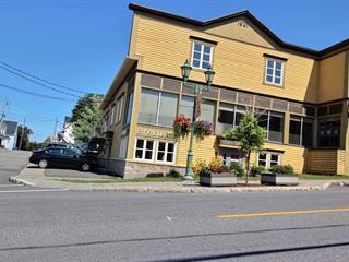 Local commercial à louer à Rivière-du-Loup, Bas-Saint-Laurent, 59, Rue  LaFontaine, 21453722 - Centris.ca