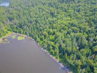 Terre à vendre à Sainte-Agathe-des-Monts, Laurentides, Chemin du Lac-Azur, 12233509 - Centris.ca