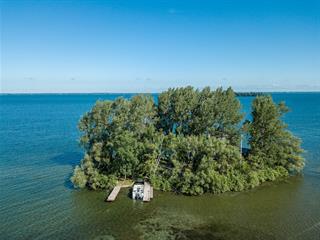 House for sale in Sainte-Barbe, Montérégie, 955, Île  Buteau, 20465636 - Centris.ca