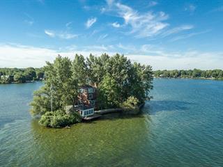Maison à vendre à Sainte-Barbe, Montérégie, 955, Île  Bluteau, 20465636 - Centris.ca