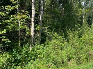 Terrain à vendre à Saint-Irénée, Capitale-Nationale, Chemin du Ruisseau-Jureux, 9398688 - Centris.ca