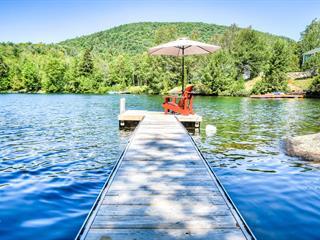 Maison à vendre à Montcalm, Laurentides, 455, Chemin du Lac-Verdure Sud, 12200588 - Centris.ca