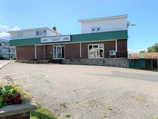 Duplex à vendre à Saint-Augustin-de-Woburn, Estrie, 595 - 605, Rue  Saint-Augustin, 22508043 - Centris.ca