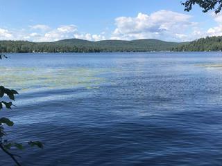 Lot for sale in Lac-Sergent, Capitale-Nationale, Chemin  Tour-du-Lac Sud, 23767813 - Centris.ca