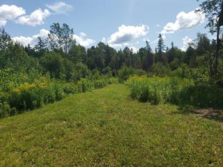 Terre à vendre à Saint-Cyprien (Chaudière-Appalaches), Chaudière-Appalaches, 277, 2e Rang Ouest, 26633478 - Centris.ca