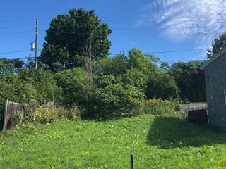 Terrain à vendre à Gatineau (Gatineau), Outaouais, 119, Rue de Saint-Vallier, 21337996 - Centris.ca