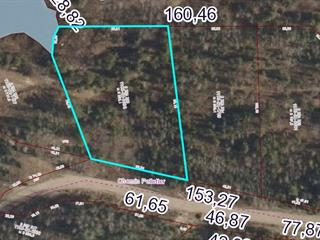 Lot for sale in Otter Lake, Outaouais, Chemin  Pelletier, 20222276 - Centris.ca