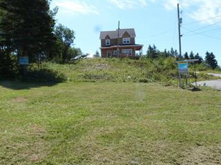 Terrain à vendre à Les Éboulements, Capitale-Nationale, 5, Chemin des Grands-Vents, 27085638 - Centris.ca