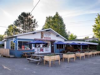 Bâtisse commerciale à vendre à Saint-Donat (Lanaudière), Lanaudière, 811, Rue  Principale, 20915692 - Centris.ca