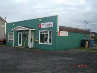 Duplex à vendre à Sainte-Anne-des-Monts, Gaspésie/Îles-de-la-Madeleine, 326 - 326B, boulevard  Sainte-Anne Ouest, 26619936 - Centris.ca