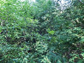 Lot for sale in Gatineau (Aylmer), Outaouais, 2, Chemin  Pink, 14632660 - Centris.ca