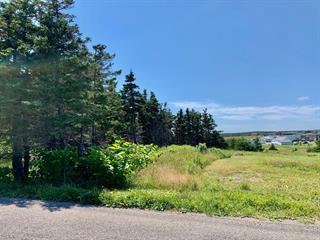 Terrain à vendre à Les Îles-de-la-Madeleine, Gaspésie/Îles-de-la-Madeleine, Chemin  Forest, 24840620 - Centris.ca