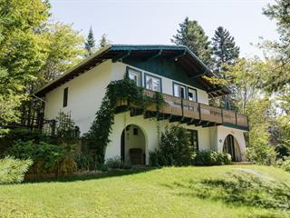 Maison à vendre à Val-David, Laurentides, 2050, Rue de Chandolin, 19166688 - Centris.ca