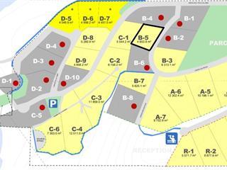 Lot for sale in Messines, Outaouais, 5B, Chemin de la Montagne, 20129606 - Centris.ca