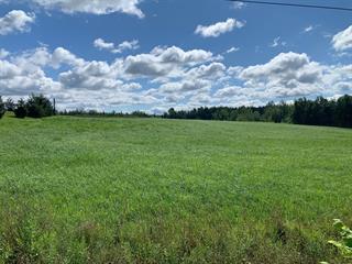 Fermette à vendre à Roxton Pond, Montérégie, 1195, Chemin  Patenaude, 12275071 - Centris.ca