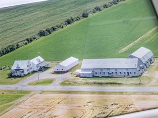 Hobby farm for sale in Saint-Zéphirin-de-Courval, Centre-du-Québec, 1350, Rang  Saint-François, 12058541 - Centris.ca