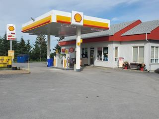 Bâtisse commerciale à vendre à Métis-sur-Mer, Bas-Saint-Laurent, 97, Route  132, 22996398 - Centris.ca