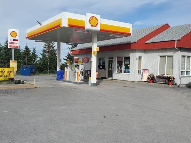Commercial building for sale in Métis-sur-Mer, Bas-Saint-Laurent, 97, Route  132, 22996398 - Centris.ca