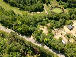 Terrain à vendre à Lac-Simon, Outaouais, Chemin  Caron, 18028176 - Centris.ca