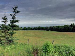 Lot for sale in Hope, Gaspésie/Îles-de-la-Madeleine, Route  132, 11859684 - Centris.ca