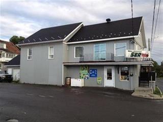 Commercial building for sale in Rivière-Bleue, Bas-Saint-Laurent, 21, Rue  Saint-Joseph Sud, 25892225 - Centris.ca