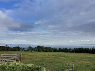 Lot for sale in Hope, Gaspésie/Îles-de-la-Madeleine, Route  132, 17787220 - Centris.ca